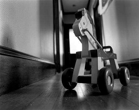 child16_toy_horse.jpg